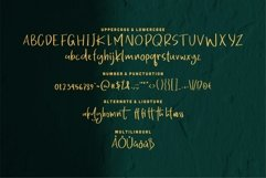 Mikael - Fancy Font Product Image 3