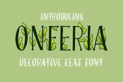 Onferia - decorative leaf font Product Image 1