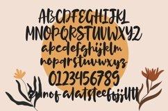 Web Font Bastiano - Handlettered Script Font Product Image 4