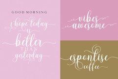 Web Font Pleasselio Script Product Image 4