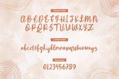 Winola - Handwritten Brush Font Product Image 3