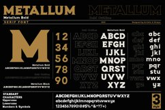 Metallum - Serif font Family Product Image 3