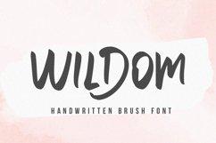 Willdom - Brush Font Product Image 1
