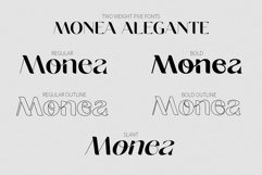 Monea Alegante Product Image 3