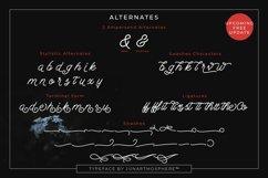 Berliana Monoline Font Extrass Logo Product Image 3
