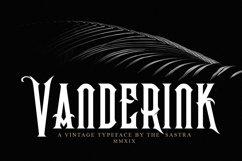Vanderink Product Image 1