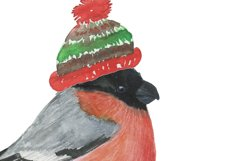 Winter animals Product Image 4