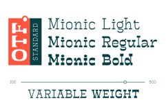 Mionic Product Image 2