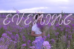Blooming sally font Product Image 6