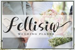 Fellissia Product Image 2
