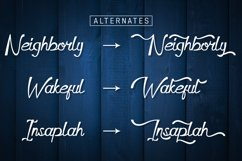 Dapka Script Typeface Product Image 5