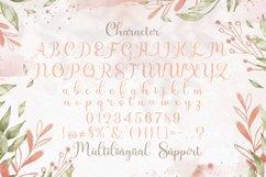 Shiny Aisyah - Handwritten Font Product Image 4
