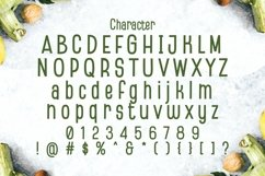 Web Font Lana Product Image 3