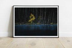 Yellow Tree - Wall Art - Digital Print Product Image 3