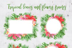 Tropical leaves and flowers clipart Product Image 5