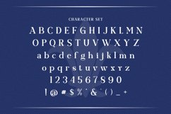 Web Font Garnished Product Image 4