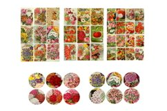 Seed Pack Ephemera Scrapbook Kit # 1 Product Image 4