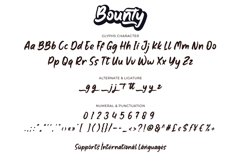 Bounty Product Image 5