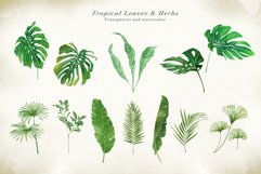 Watercolor & Gold Tropical Leaves Collection Product Image 4