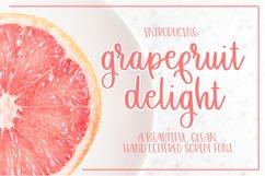 Grapefruit Delight Font - Hand Lettered Script Product Image 1
