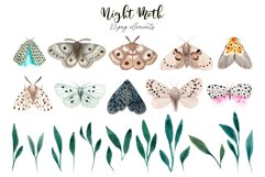 Night Moth. Watercolor Patterns and Clipart Product Image 2