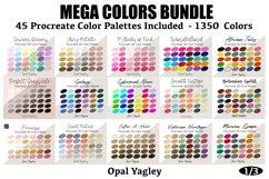 Procreate Color Palette Bundle -MEGA Pack 1350 Colors Product Image 4