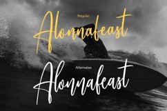 Alonnafeast Brush Script Font Product Image 5