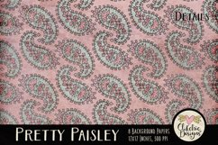 Paisley Background Textures - Shabby Pretty Paisley Papers Product Image 2