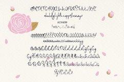 Web Font Rose Lemonade Product Image 2