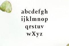 Jerrick Serif 6 Font Pack Product Image 4
