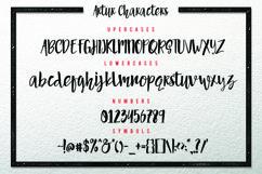 Web Font Artur Script Product Image 3