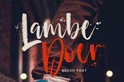 LambeDoer Brush Script Product Image 1