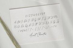 Antonio Fischer Signature Monoline Calligraphy Font Product Image 6