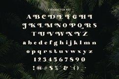 Web Font Atticus Product Image 5