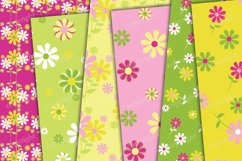 Flowers and stripes digital backgrounds Product Image 2