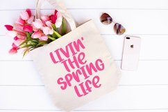 Web Font Spring Fair - A Quirky Hand-Lettered Font Product Image 2