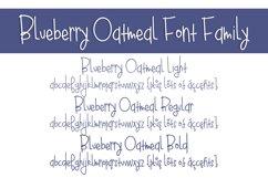 Blueberry Oatmeal Product Image 2