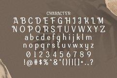Web Font Dormanio Product Image 6