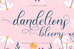 Dandelions Bloom Product Image 1