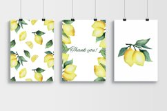 Watercolor Lemon Product Image 8