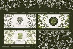 Line Leaf Logo Design / Leaf Svg / Plant Svg Product Image 6