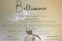 Bellissimo Product Image 2