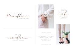 Beloved Ottilia Font 60 Free Logos Product Image 3