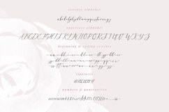 Leisoll Reef, modern calligraphy script Product Image 2