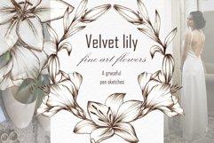 Graceful Lily, botanical Illustrations for wedding, vintage Product Image 1