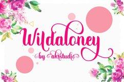 Wildaloney Product Image 1