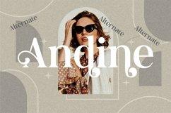 Andine - Beautiful Serif Font Product Image 3