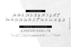 Ink Line | Modern Script Font Product Image 3