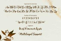 Babylone | Script Font Product Image 5