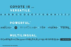 Coyote - a crazy & retro font family with optional stencils Product Image 3